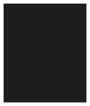 City House LKV